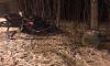 В Самаре в ДТП молодой девушке оторвало голову