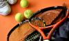 Александр Медведев прокомментировал проведение теннисных матчей без зрителей