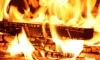 В Нижегородской области пожарные вытащили из огня пьяных поджигателей