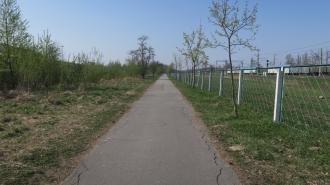 """Тропинка вдоль железной дороги в Колпино стала """"яблоком раздора"""" между местными жителями"""