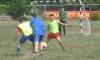 Кубок Приморского района по мини-футболу среди любительских команд