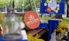 В Ленобласти пройдет Всероссийский фестиваль энергосбережения #ВместеЯрче