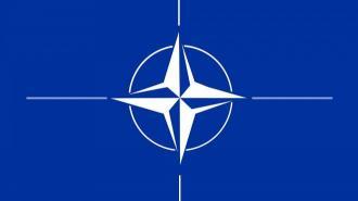 Страны-союзники НАТО выразили готовность в поддержке Украины