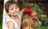 Ребенка, похищенного под Владимиром, зверски убили и бросили в лесу