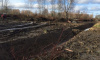В Петербурге возбудили уголовное дело из-за исчезновения пруда