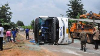 ДТП в Таиланде: ранены более 20 россиян, ехавших кататься на слонах