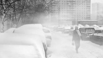 В Петербурге нашли обмороженную связанную пэтэушницу