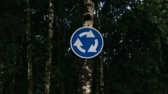 """На юге Петербурга дерево стало держателем знака """"круговое движение"""""""