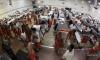 Жителя США, вышедшего на свободу на 90 лет раньше, вновь отправят в тюрьму