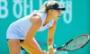 Теннисистка Потапова вышла в основную сетку турнира в Петербурге