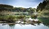 В реке Матросовке Выборгского района найден утопленник