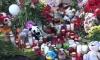 В Заксобрании Петербурга предложили отменить праздничную программу на 4 ноября