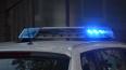 В Полюстрово обнаружили мертвого шестимесячного ребенка
