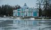 В Петербурге началась весенняя просушка садов и парков