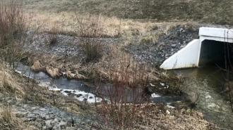 Оператора Пулково оштрафовали на 93 тысячи рублей за сброс сточных вод