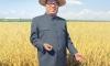 Сбежавший дипломат может выдать тайны КНДР Америке