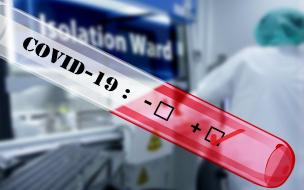 В Северной столице может не хватить новых экспресс-тестов на коронавирус