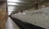 В московском метро погибла женщина, упав на рельсы