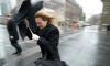 Петербургское управление МЧС предупреждает горожан о сильном ветре