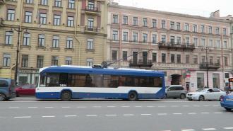 """В Петербурге не планируют отказываться от трамваев и троллейбусов ради """"чистого неба"""""""