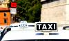 Руководители петербургских таксопарков выступили против единого белого цвета для всех такси