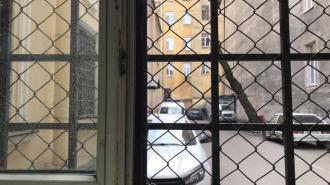 Координатор штаба Навального в Петербурге получила протокол за организацию протестной акции