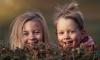 Администрация Выборгского района рассказала о летней оздоровительной кампании для детей