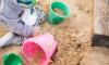 Прокуратура нашла блох и мух в детском саду на улице Подвойского