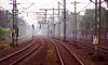 В Ленобласти безработные петербуржцы попались на краже железнодорожных рельс