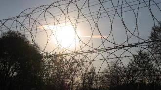 Жалобы Толоконниковой на мордовскую колонию подтвердились