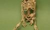 Установлена личность человека, скелет которого нашли у шалаша Ленина в Разливе