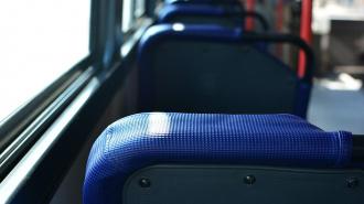 В Петербурге троллейбус № 13 изменит маршрут движения