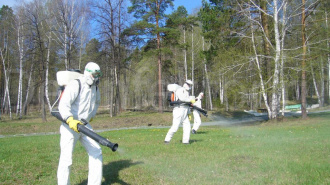 В Выборге началась акарицидная обработка парков и лесопарковых зон