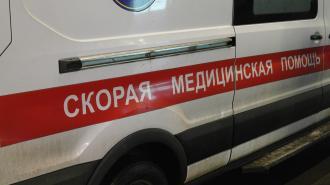 На Приморском шоссе водитель Haval въехал в столб