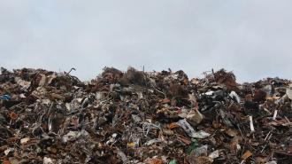За неделю петербуржцы более 180 раз обратились в экологические службы