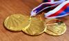 Вячеслав Макаров наградил мать Полтавченко золотой медалью