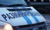 В Колпино около детского сада нашли неразорвавшийся снаряд со времен ВОВ