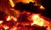 Семья из шести человек заживо сгорела в собственном доме в Пермском крае