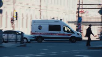 Восьмиклассница из Колпино впала в алкогольную кому