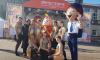 В фестивале энергосбережения и экологии #ВместеЯрче в Луге приняли участие 3 тысячи человек