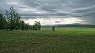 В Ленобласти в День Победы не будет дождя