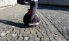 Туристам Петербурга помогут волонтеры на сегвеях