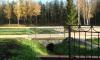 В Ковалевском лесу может появиться мемориальный музей памяти жертв политических репрессий