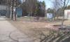 В Ленобласти за нарушение самоизоляции оштрафовали почти 250 человек