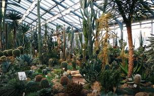Вход в Ботанический сад Петра Великого с 1 мая подорожае...