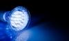 Ученые доказали, что синий свет снимает усталость