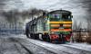 В Чите 18-летний призывник выпал из вагона поезда