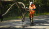 На дороги в Ленобласти выделят дополнительные полмиллиарда рублей