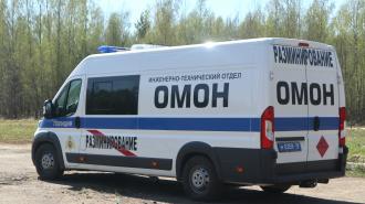 В Петербурге и Ленобласти взрывотехники ОМОН дважды за сутки обезвредили боеприпасы времён войны