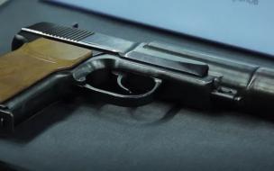 Суд отправил петербуржца на принудительное лечение по делу о стрельбе в полицейского